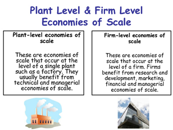 Growth of Firms - Plant & Firm Level Economies of Scale - Economics