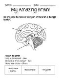 Growth vs. Fixed Mindset Booklet (Mindfulness, Social-Emot