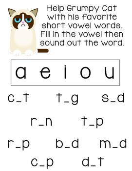 Grumpy Cat Short Vowel CVC Word Activity