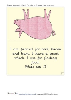 Guess the Farm Animal