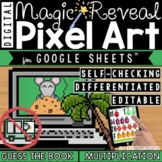Guess the Picture Book Digital Pixel Art Magic Reveal MULT