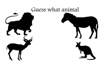 Guess what animal-zoo 2