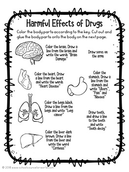 Guidance Lesson on the Long-Term Effect of Drugs for Grades 4-6