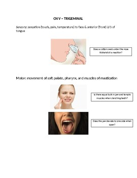Guide to Cranial Nerve Exam for Swallowing
