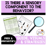 Guide, visuals and strategies: sensory component to the behavior?