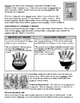 15 - Immigration & Urbanization - Scaffold/Guided Notes (F