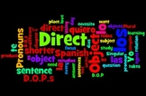 Guided Notes & Practice: Direct Object Pronouns (Beginning Spanish)