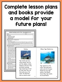 Guided Reading Activities and Lesson Plans - Levels E Through J BUNDLE