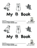 Guided Reading Alphabet Books - Letter B - Level 1
