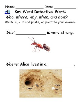 Guided Reading Worksheets- Alice the Super Ant - Level E for Gifted and Talented