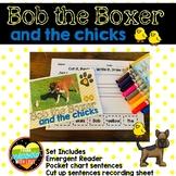 Emergent Reader Kindergarten--Chicken Lifecycle