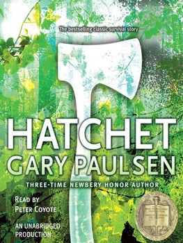 Guided Reading Comprehension Packet - Hatchet