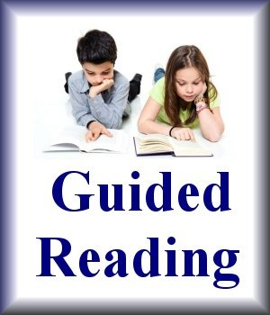 Guided Reading Halfway Quiz for Any Book Common Core Aligned