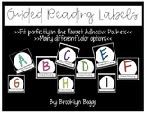 Guided Reading Labels (Target Adhesive Pocket Size)
