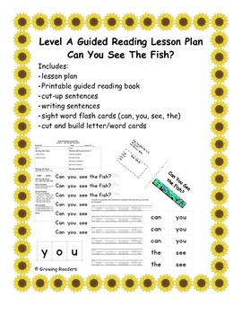 Guided Reading Lesson Level A book and more: Can You See T