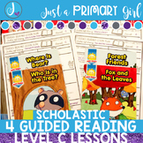 Guided Reading Lesson Plans Level C