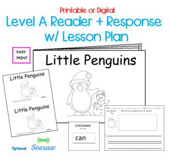 Guided Reading Level A Printable Book and Lesson Plan: Lit