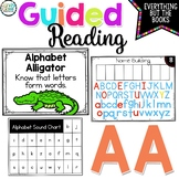 Guided Reading Level Pre A: Guided Reading Group Activitie