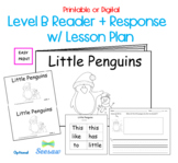 Guided Reading Level B Printable Book and Lesson Plan: Little Penguins