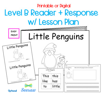 Guided Reading Level B Printable Book and Lesson Plan: Lit