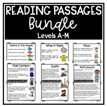 Guided Reading Level D, E, F, G / DRA 6, 8,10, 12 Passages with Comprehension