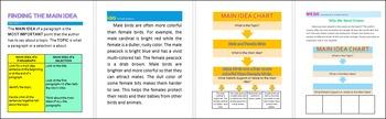 Guided Reading MAIN IDEA Grade 5