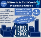Guided Reading: Mitosis, Cell Division, the Cell Cycle, Ca
