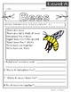 Guided Reading Nonfiction Passages Level A