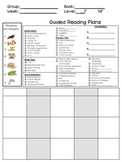Guided Reading Plan Beanie Babies