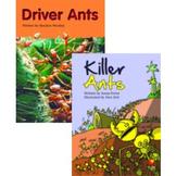 Guided Reading Plans - Killer Ants - Level 20 - 1 Week