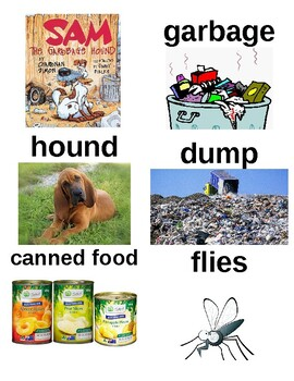 Guided Reading/Read Aloud Plan SAM THE GARBAGE HOUND Charnan Simon Level G