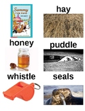 Guided Reading/Read Aloud Plan SAMMY THE SEAL Level H Syd Hoff