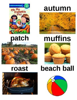 Guided Reading/Read Aloud Plan for OH MY, PUMPKIN PIE by Charles Ghigna