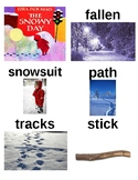 Guided Reading/Read Aloud Plan for The Snowy Day by Ezra Jack Keats Level J