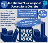Guided Reading: The Cell Membrane, Cell Transport, Diffusi