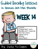 Guided Reading Week 14 in Spanish