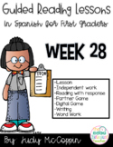 Guided Reading Week 28