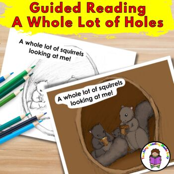 Guided Reading/Teaching Homophones Sight Word Book -A Whole Lot of Holes