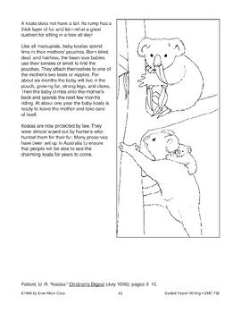 Guided Report Writing: Koalas
