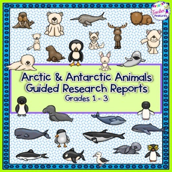 Arctic and Antarctic Animals Research Report