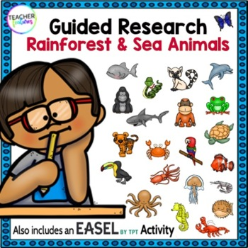 Rain Forest and Sea Animals Research Paper