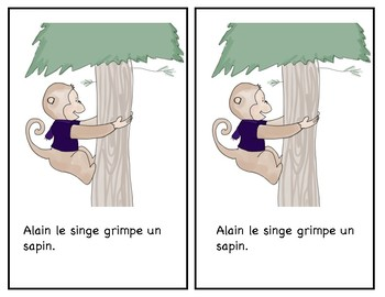 "Guided reading -livre -jolly phonics/phoniques -French -Français - ""in/ain"""