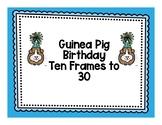 Guinea Pig Birthday 10 Frame Match to 30