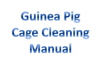 Guinea Pig Cage Cleaning Directions