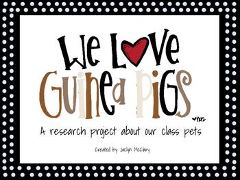 Guinea Pig Research
