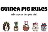 Guinea Pig Rules