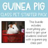 Guinea Pig Starter Pack Bundle