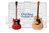 Guitar Anatomy 101