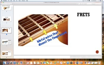 Guitar Anatomy Bundle