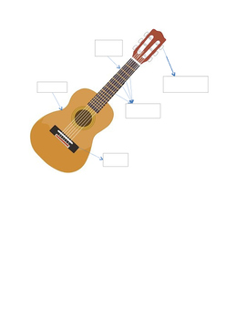 Guitar Parts Quiz
